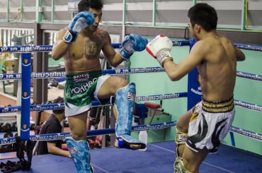protège tibia muay thai